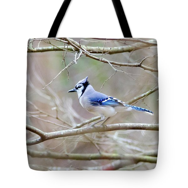 Tote Bag featuring the photograph Blue Jay by George Randy Bass