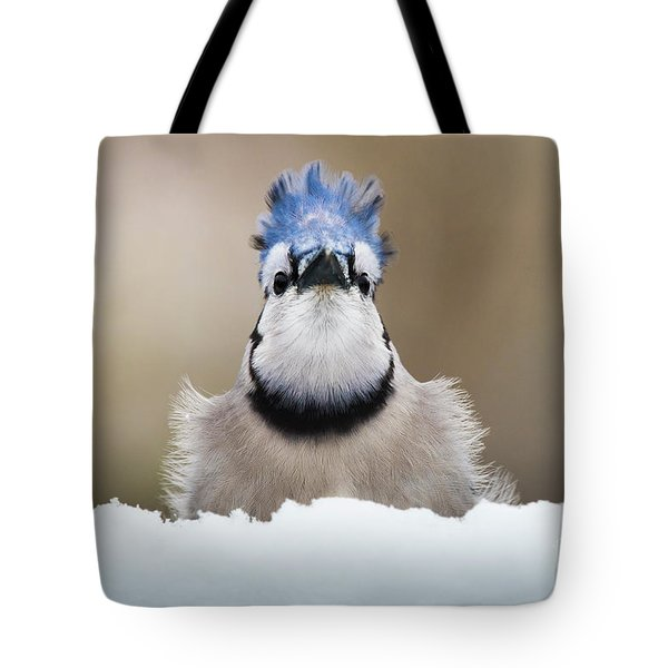 Blue Jay In Snow Tote Bag