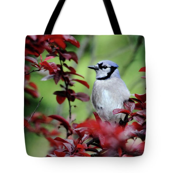Blue Jay In The Plum Tree Tote Bag