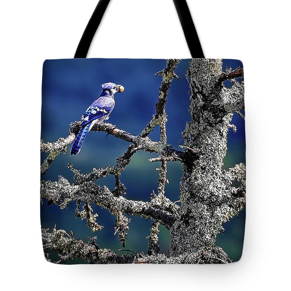 Blue Jay Mountain Tote Bag