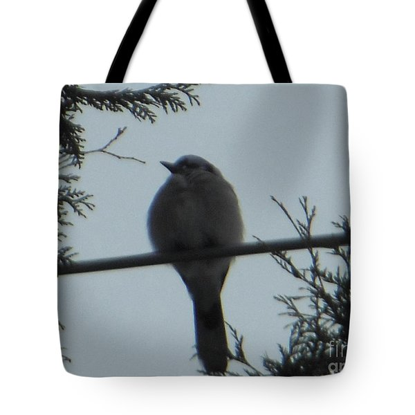 Blue Jay On Wire Tote Bag