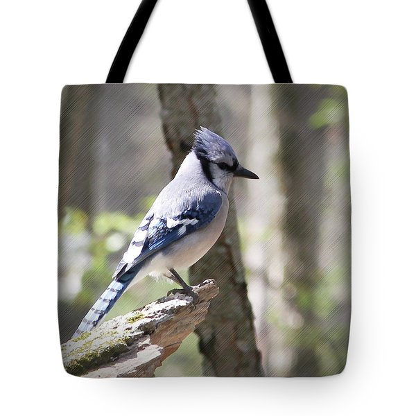 Blue Jay Perch Tote Bag by Anita Oakley