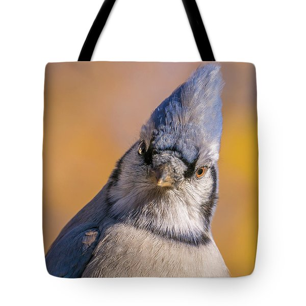 Blue Jay Portrait Tote Bag