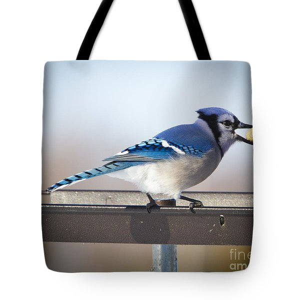 Blue Jay With A Mouth Full Tote Bag