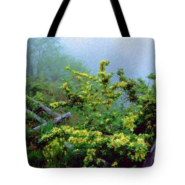 Blue Marsh Dam Fog 003 Tote Bag by Scott McAllister