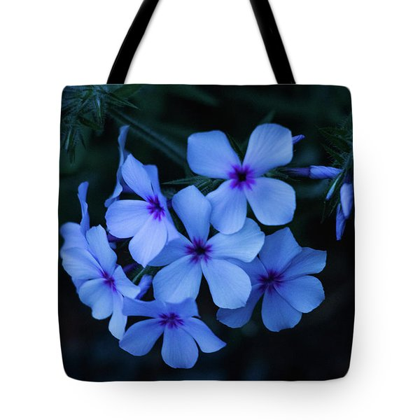 Tote Bag featuring the photograph Blue Moon Phlox by Cristina Stefan
