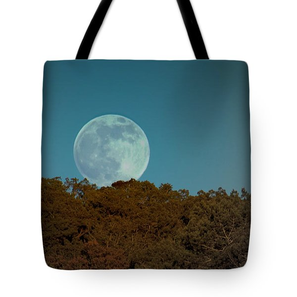 Blue Moon Risign Tote Bag by Karen Musick