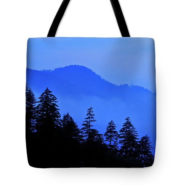 Tote Bag featuring the photograph Blue Morning - Fs000064 by Daniel Dempster