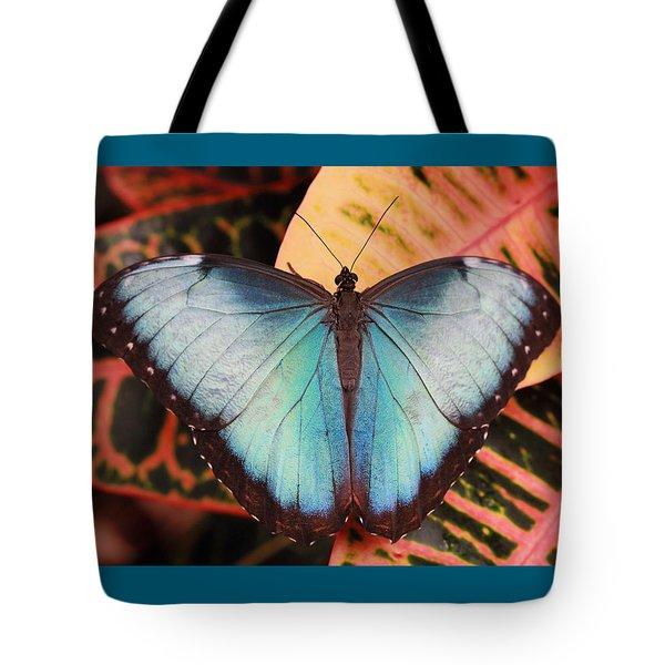 Blue Morpho On Orange Leaf Tote Bag