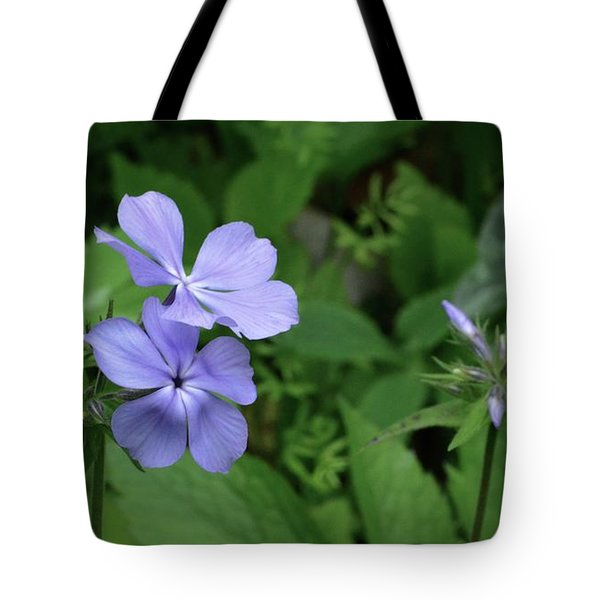 Blue Phlox Tote Bag by Tim Good