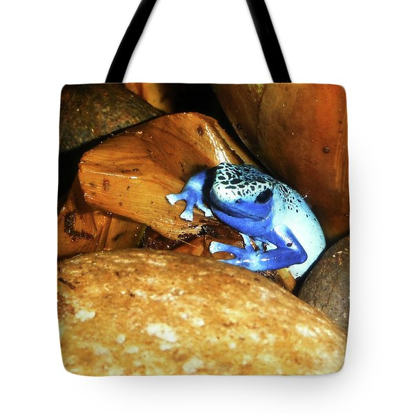 Tote Bag featuring the photograph Blue Poison Dart Frog by Anthony Jones
