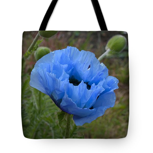 Tote Bag featuring the digital art Blue Poppy by Paul Gulliver