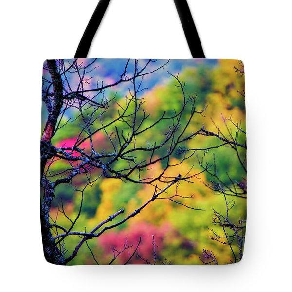 Blue Ridge Autumn Tote Bag