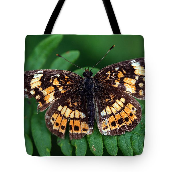 Blue Ridge Butterfly Tote Bag