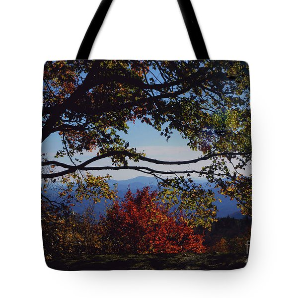 Blue Ridge Mountain View Tote Bag