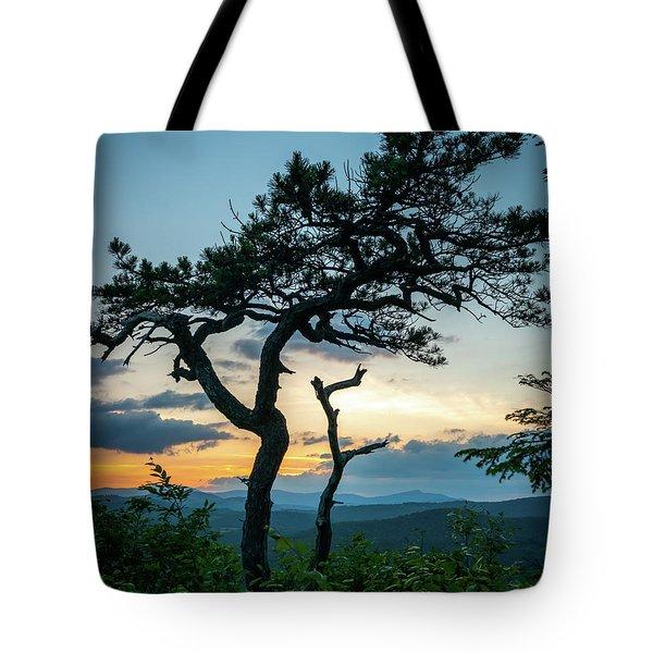 Blue Ridge Mountains Dr. Tree Tote Bag