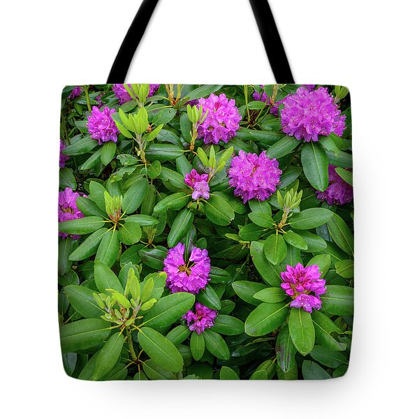 Blue Ridge Mountains Rhododendron Blooming Tote Bag