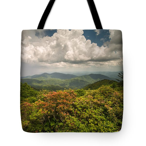 Blue Ridge Parkway Green Knob Overlook Tote Bag by Rick Dunnuck