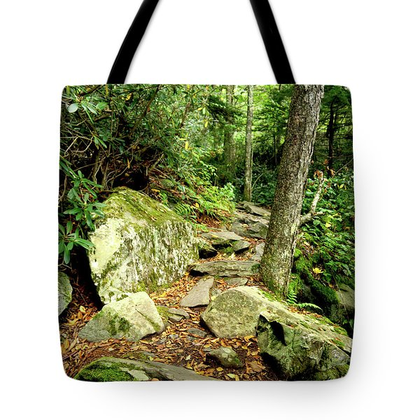 Tote Bag featuring the photograph Blue Ridge Parkway Hiking Trail by Meta Gatschenberger