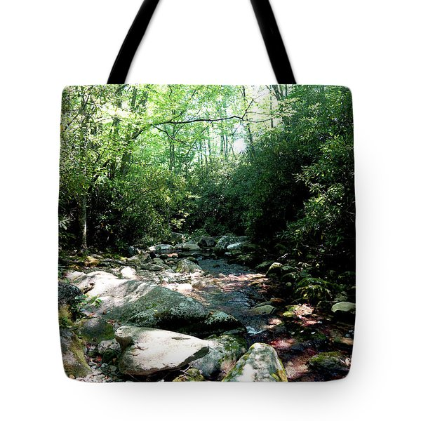 Tote Bag featuring the photograph Blue Ridge Parkway Stream by Meta Gatschenberger