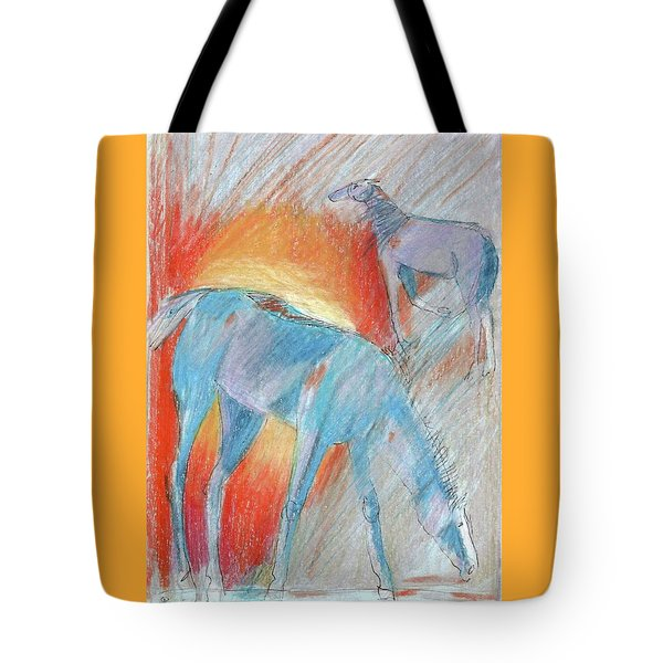 Blue Roans Tote Bag by Mary Armstrong
