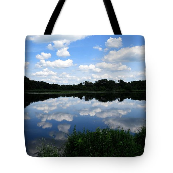 Tote Bag featuring the photograph Blue Skies At Cadiz Springs by Kimberly Mackowski
