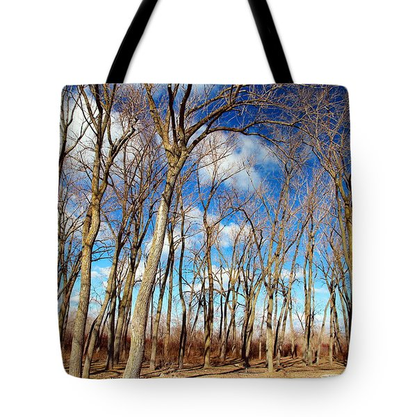 Tote Bag featuring the photograph Blue Sky And Trees by Valentino Visentini