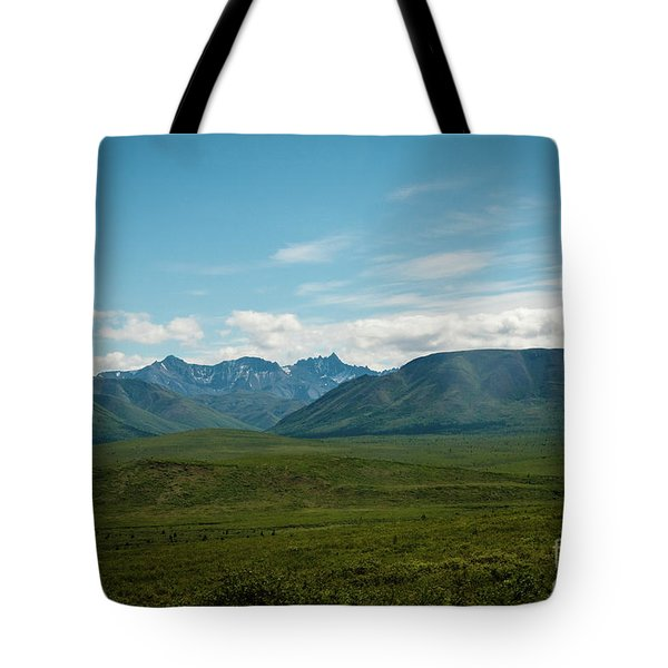 Blue Sky Mountians Tote Bag
