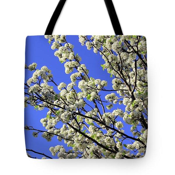 Blue Sky Pear Blossom Tote Bag