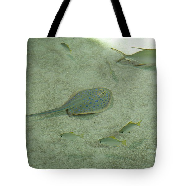 Tote Bag featuring the photograph Blue Spotted Ray And Friends by Carol Lynn Coronios