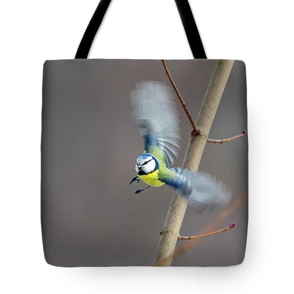 Blue Tit In Flight Tote Bag