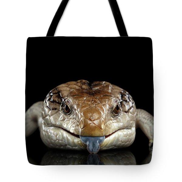 Blue-tongued Skink Tote Bag
