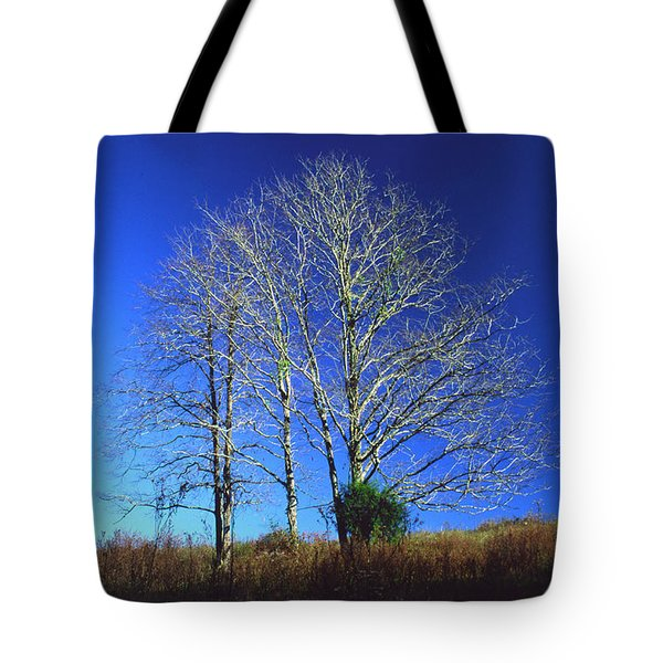Blue Tree In Tennessee Tote Bag