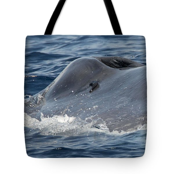 Blue Whale Head Tote Bag