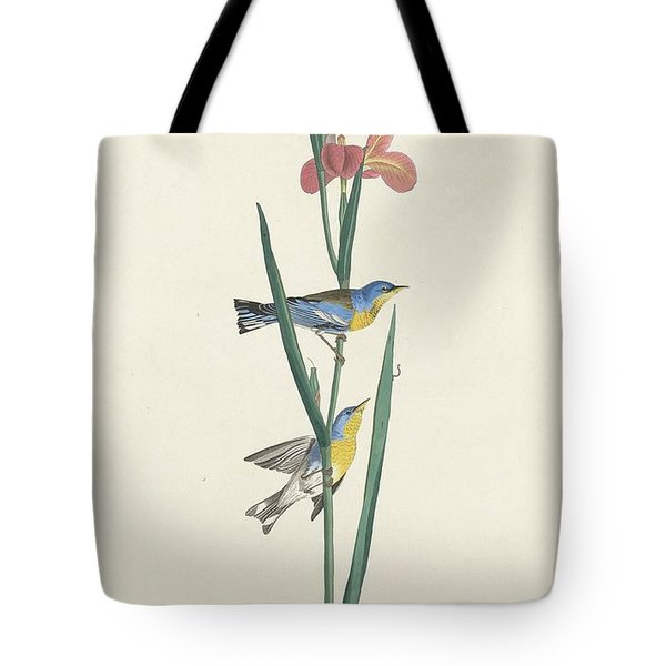 Blue Yellow-backed Warbler Tote Bag