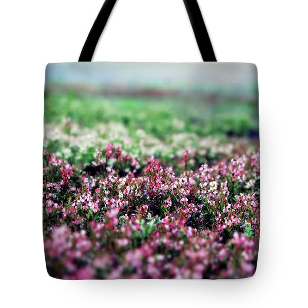 Tote Bag featuring the photograph Blueberry Blossoms  by Alana Ranney