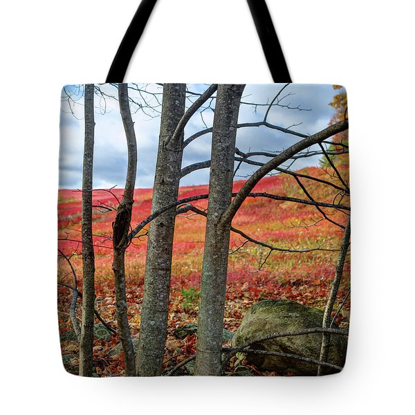 Blueberry Field Through The Wall - Cropped Tote Bag