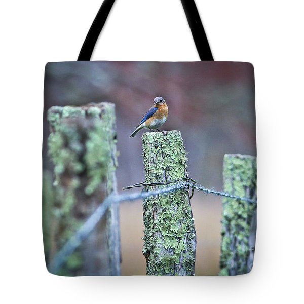 Tote Bag featuring the photograph Bluebird 040517 by Douglas Stucky
