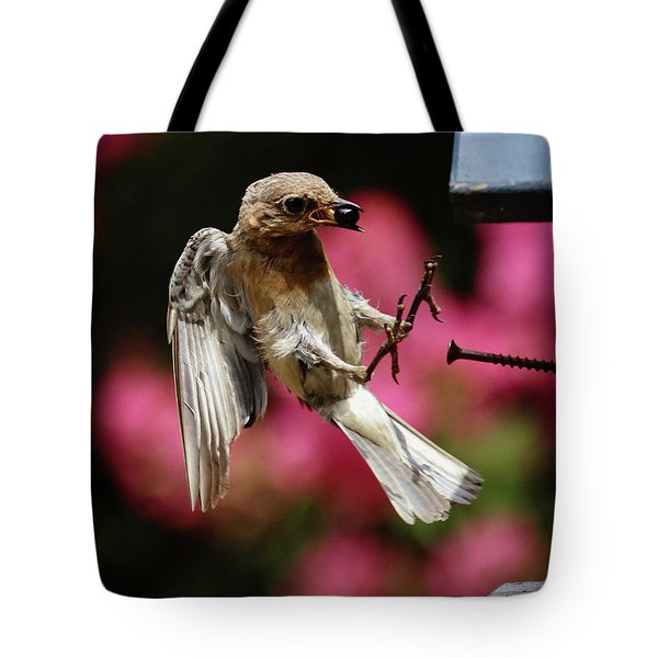 Tote Bag featuring the photograph Bluebird 0726162 by Douglas Stucky