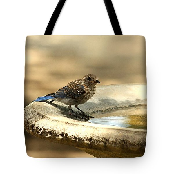 Tote Bag featuring the photograph Bluebird Bath Time by Sheila Brown
