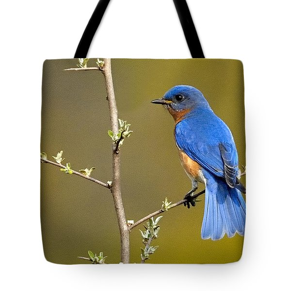 Bluebird Bliss Tote Bag