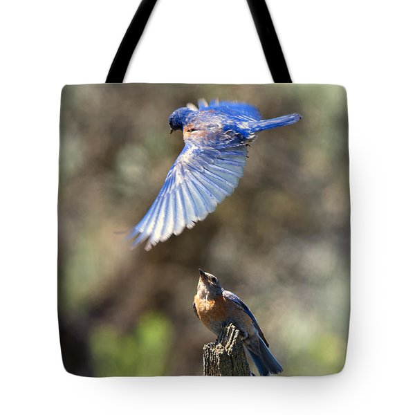 Bluebird Buzz Tote Bag by Mike Dawson