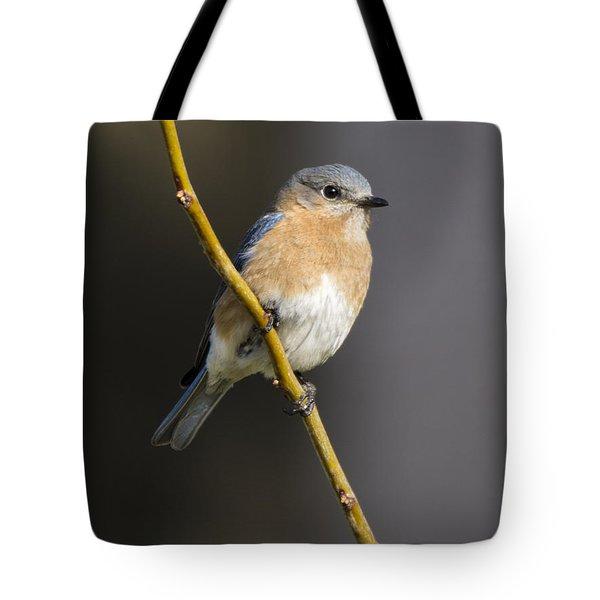 Bluebird Female Tote Bag