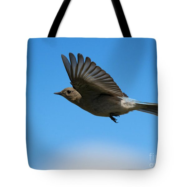 Bluebird Glide Tote Bag by Mike Dawson
