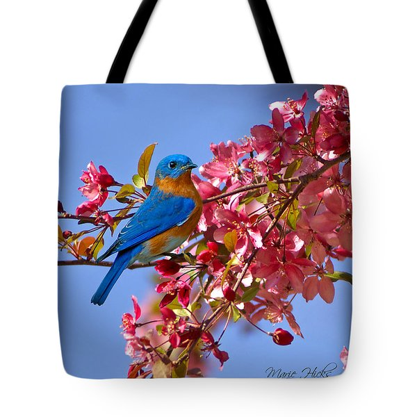 Bluebird In Apple Blossoms Tote Bag