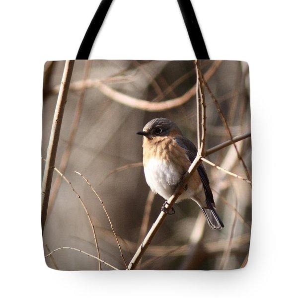 Bluebird In Beige Tote Bag