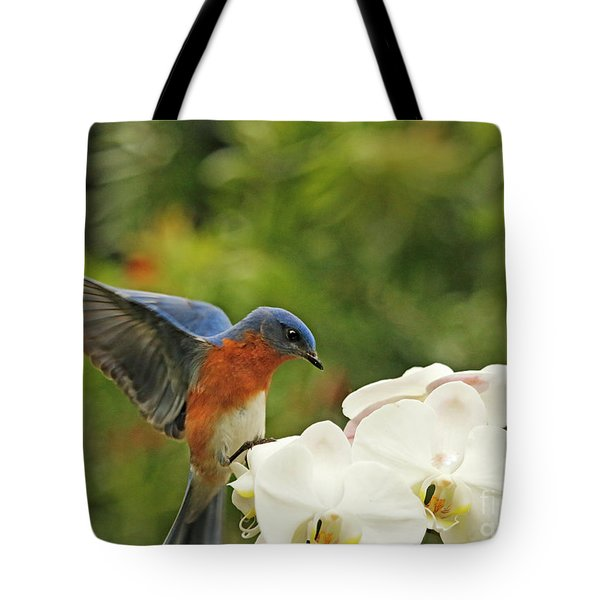 Bluebird Landing On Orchid Tote Bag