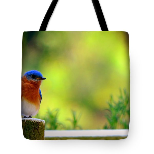Tote Bag featuring the photograph Bluebird by Lisa Wooten