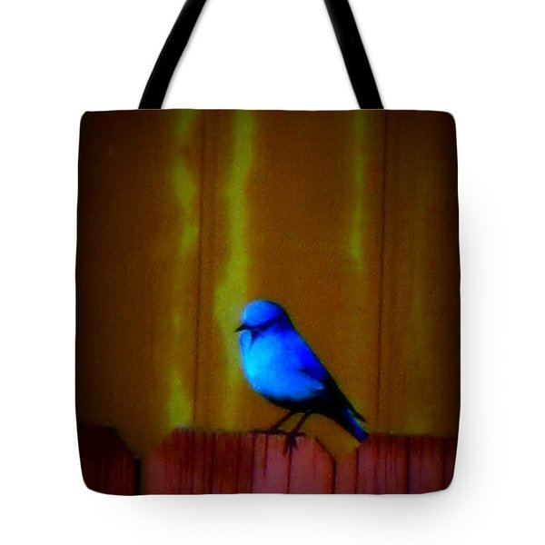Tote Bag featuring the photograph Bluebird Of Happiness by Karen Shackles