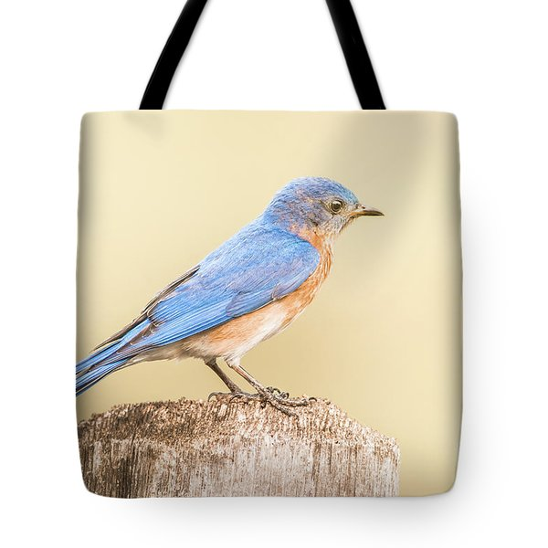 Tote Bag featuring the photograph Bluebird On Fence Post by Robert Frederick